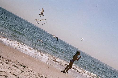 Girl and Gull on Brighton Beach