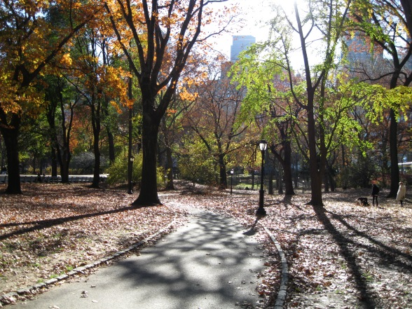 Fall in Central Park. (Not a command, a description of the season and the place.)
